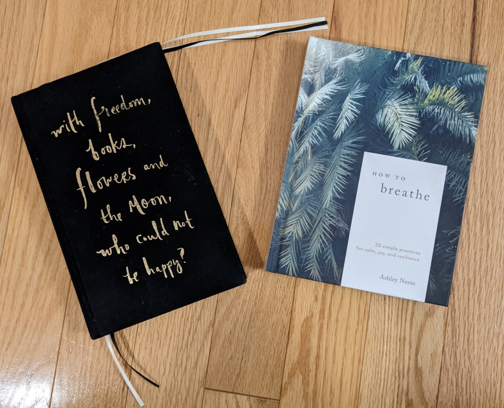 Note Book and How To Breathe book by Ashley Neese
